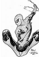 Amazing Spider-Man - Paris Comics Expo 2012 by SpiderGuile