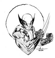 Wolverine - Paris Manga SciFi Show feb 2014 by SpiderGuile