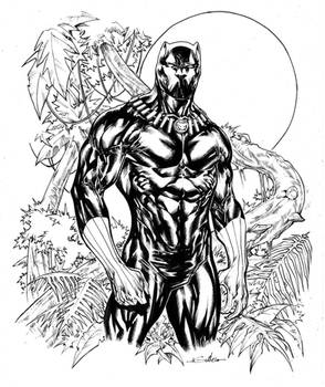 Black Panther in Wakanda fields