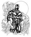 Black Panther in Wakanda fields