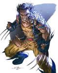 Feral Wolverine - Daniel M.Chavez colors
