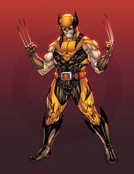Wolverine costume redesign by SpiderGuile