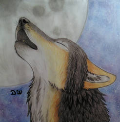 A prayer to the moon. by DanyWolf