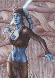 Aayla: Women of Star Wars by AllisonSohn