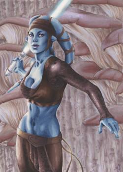 Aayla: Women of Star Wars
