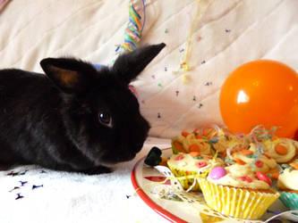 Birthday Bunny :D by Crafty-lil-vixen