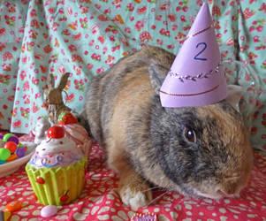 Oz's 2nd Birthday by Crafty-lil-vixen