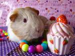Millie's 4th Birthday! by Crafty-lil-vixen