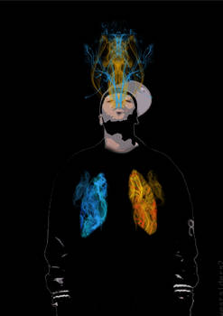 Coloured Lungs 2