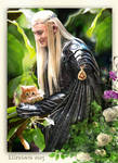 Thranduil and the one-eared kitten