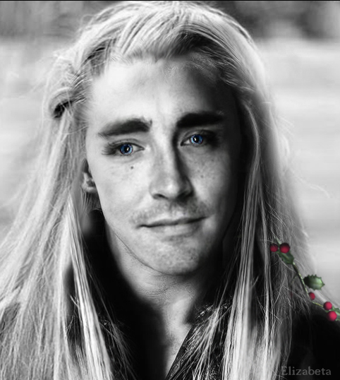 thranduil wallpaper by betka - photo #13