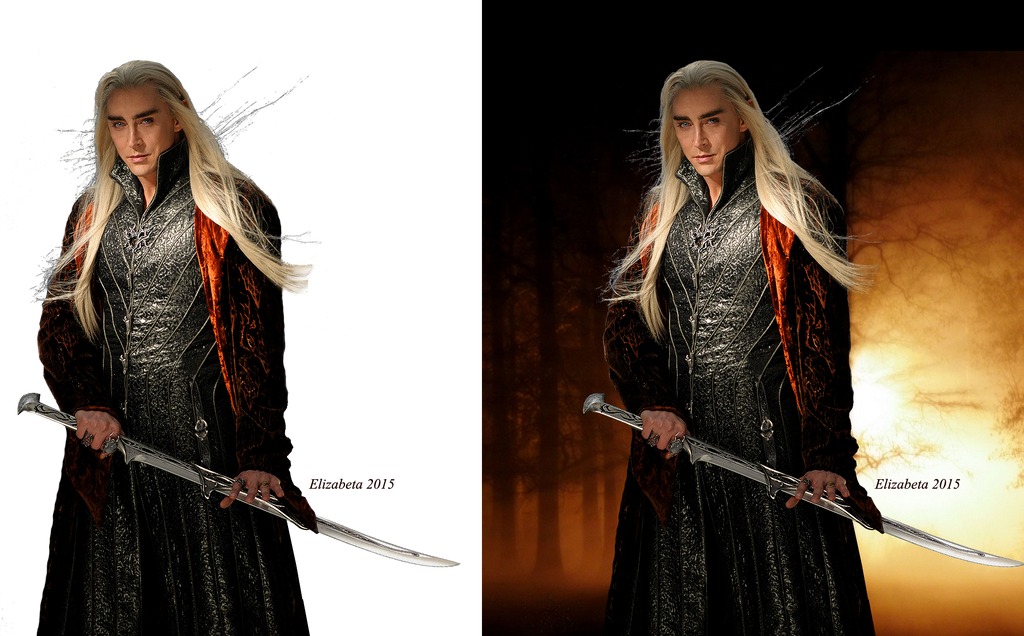 thranduil wallpaper by betka - photo #7