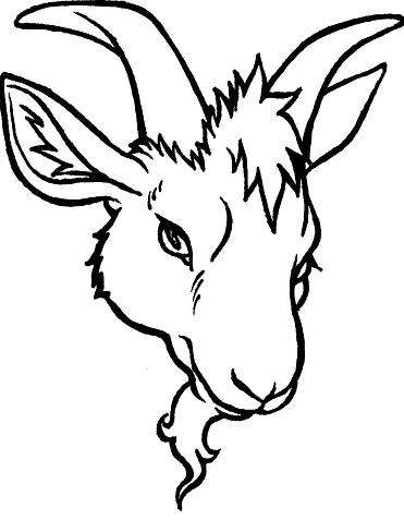 Goat's Head Tattoo by the-taxidermy on DeviantArt Goat Face Side Drawing