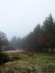 Road to Bruncu Spina