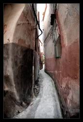 Old Corridor by BrightRedFox