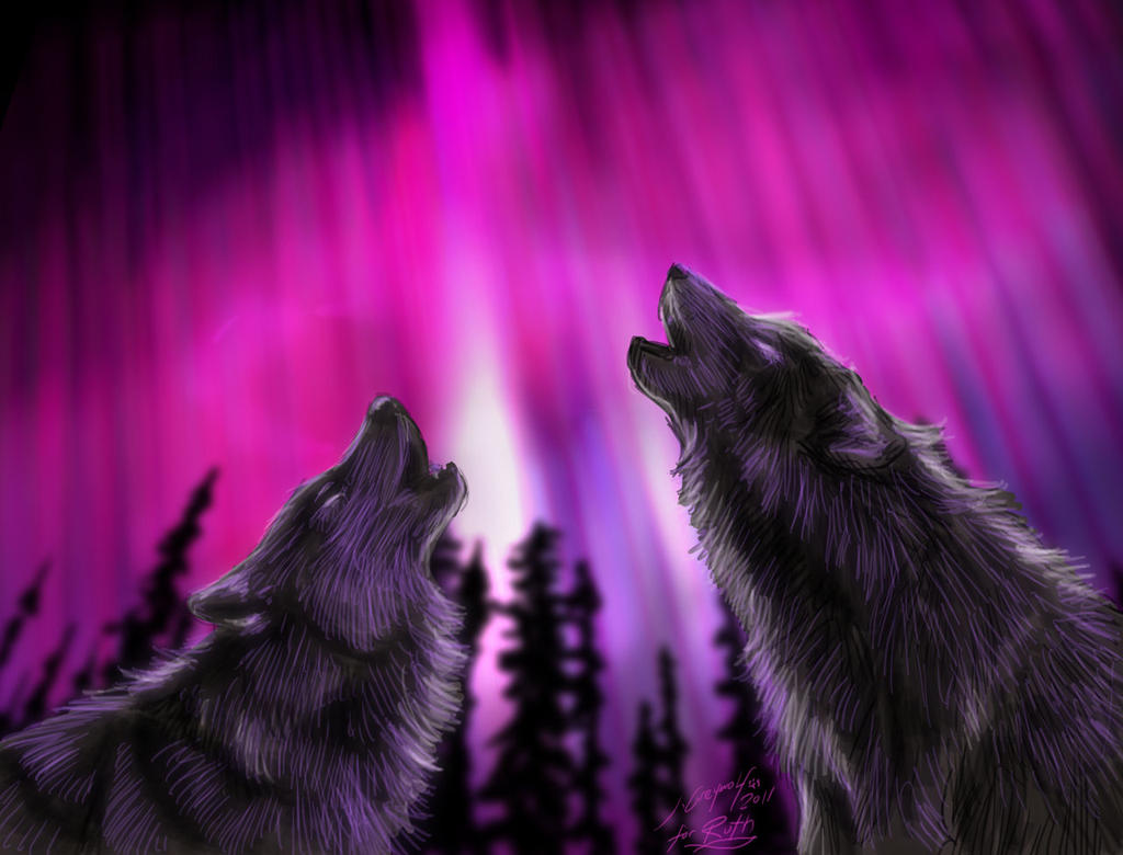 real northern lights wolf - photo #6
