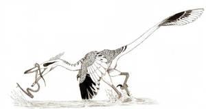 Heron Raptor by pilsator
