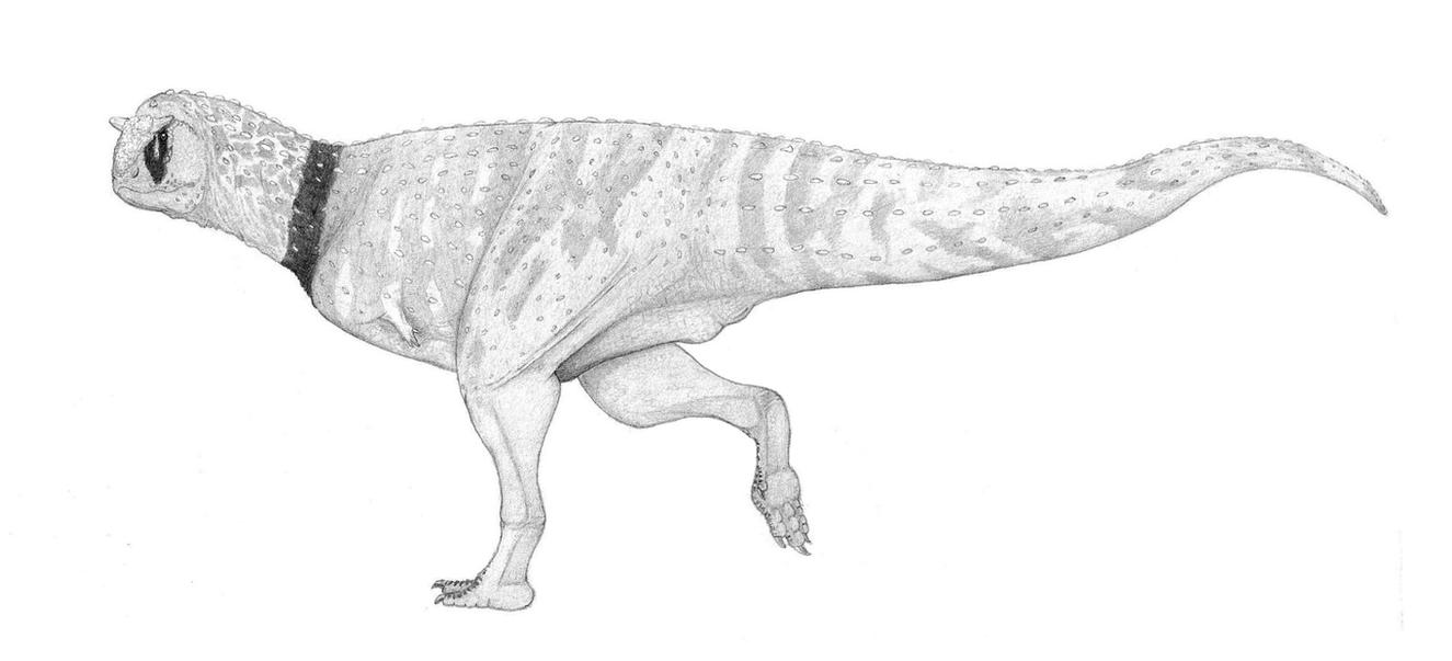 [TEST] Carnotaurus Mk.1 Mod.2 by pilsator