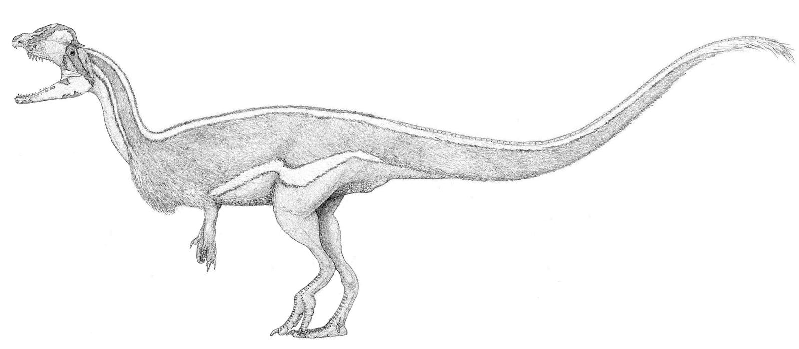 A Sleek Dilophosaur by pilsator