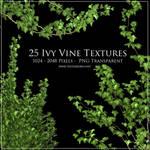 Ivy Vine Textures
