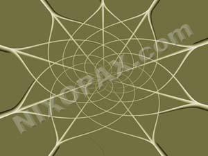 Elfish Spiderweb by nixopax