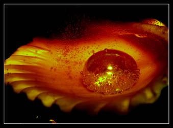 Fiery Bubbles by alessia05