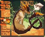 Xavier {Kebanzu Registration}