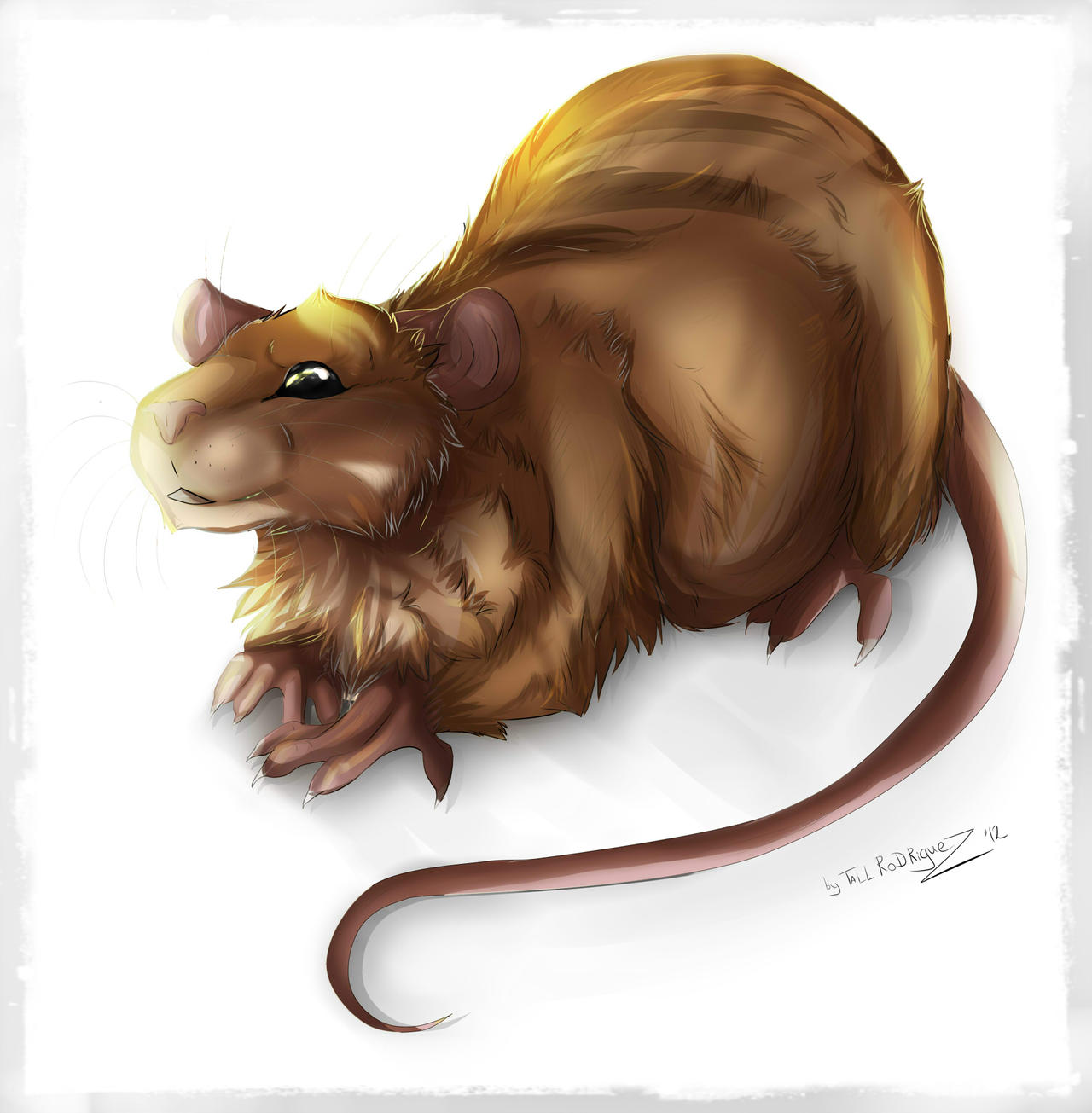 Kemili rat by Tai-L-RodRigueZ