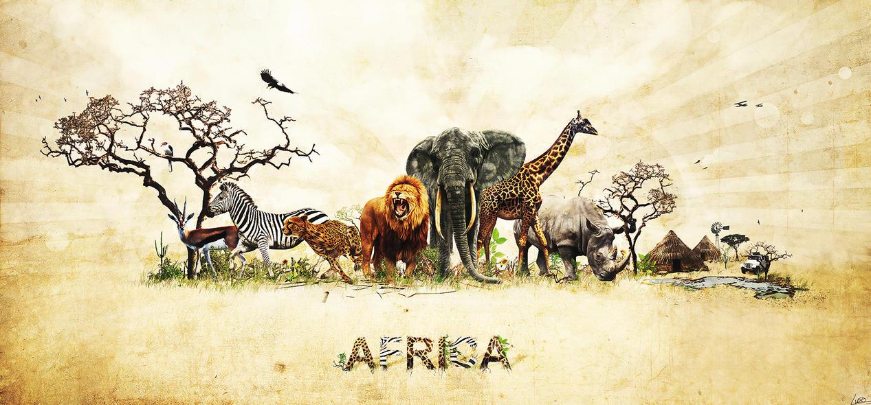 Картинка с надписью африка