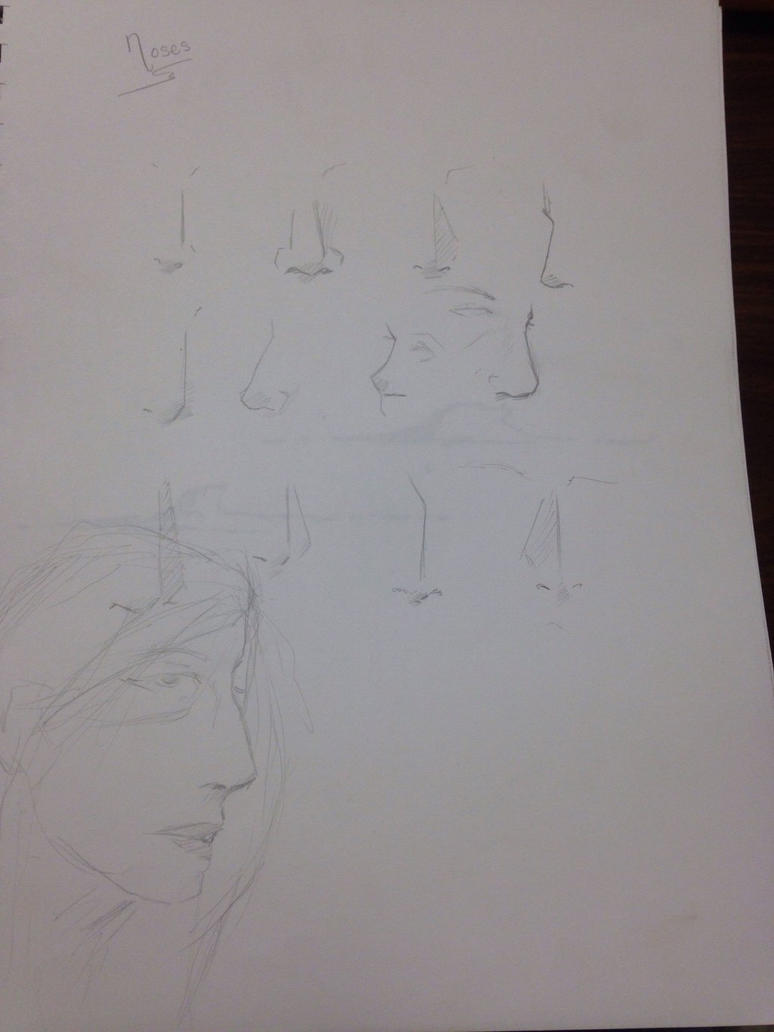 Nose Study by Newbie227