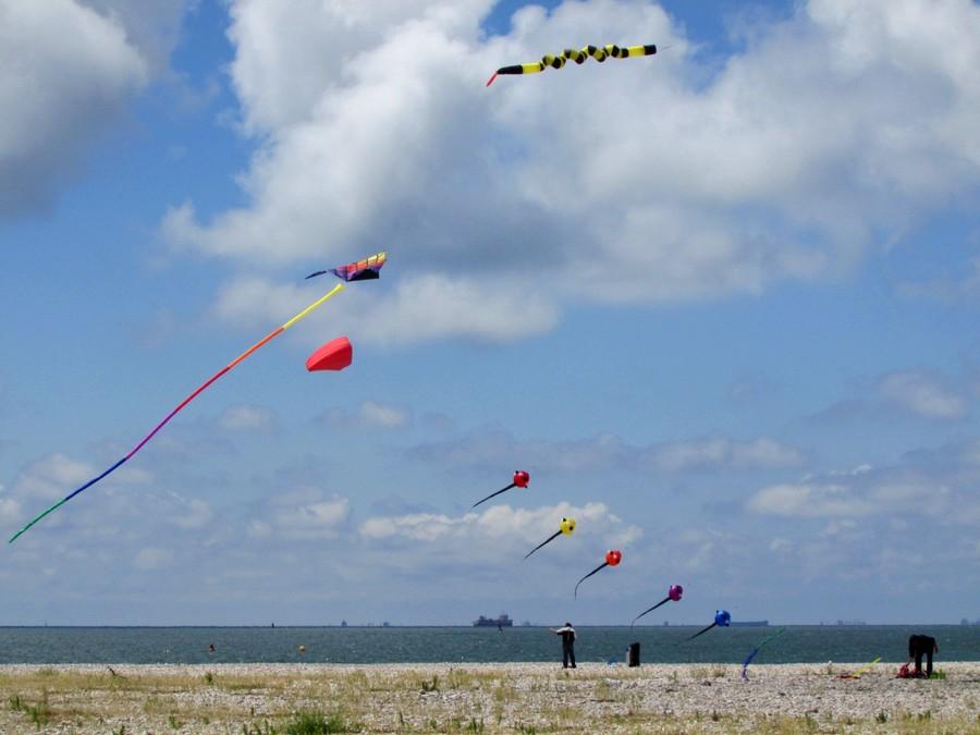Kites I by Arcadiaelfe