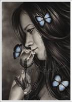 Blue Butterflies by Zindy