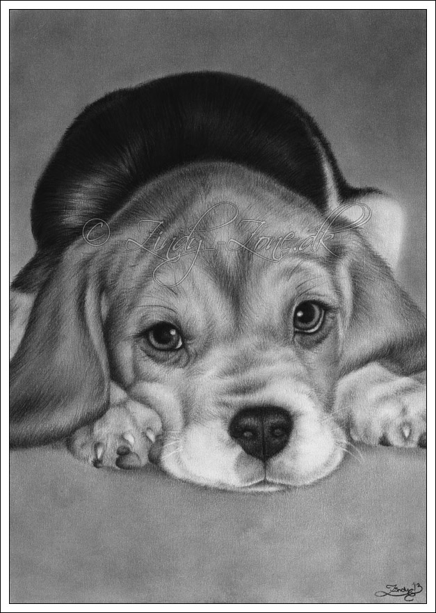 Cute For You Puppy by Zindy on DeviantArt