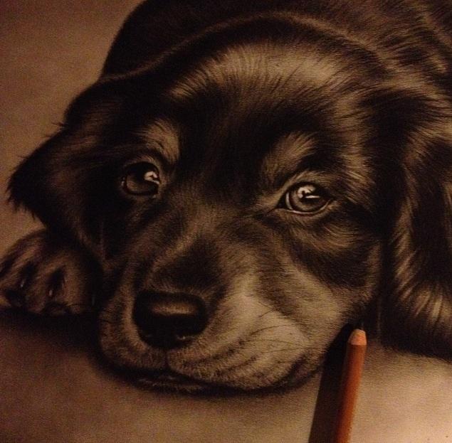 Sweetest little doggie wip by Zindy