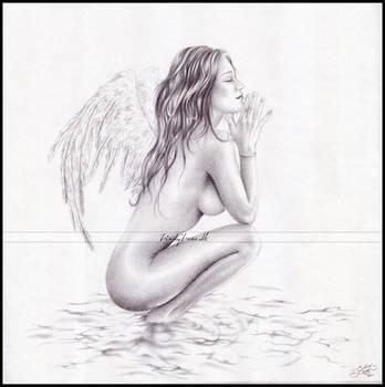 Angel by Zindy