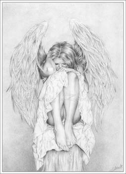 Please my wings, take me away