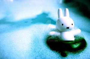 Fun with Miffy 1