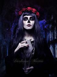 5 de Maio... by DarkressaMortiis