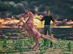 Pony Picture Challenge