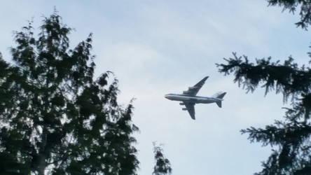 An-124-02