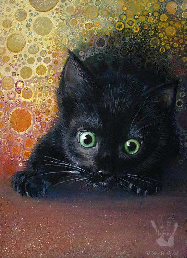 Cat Went Crazy by ilonaxxx