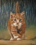 Kote Under the Rain