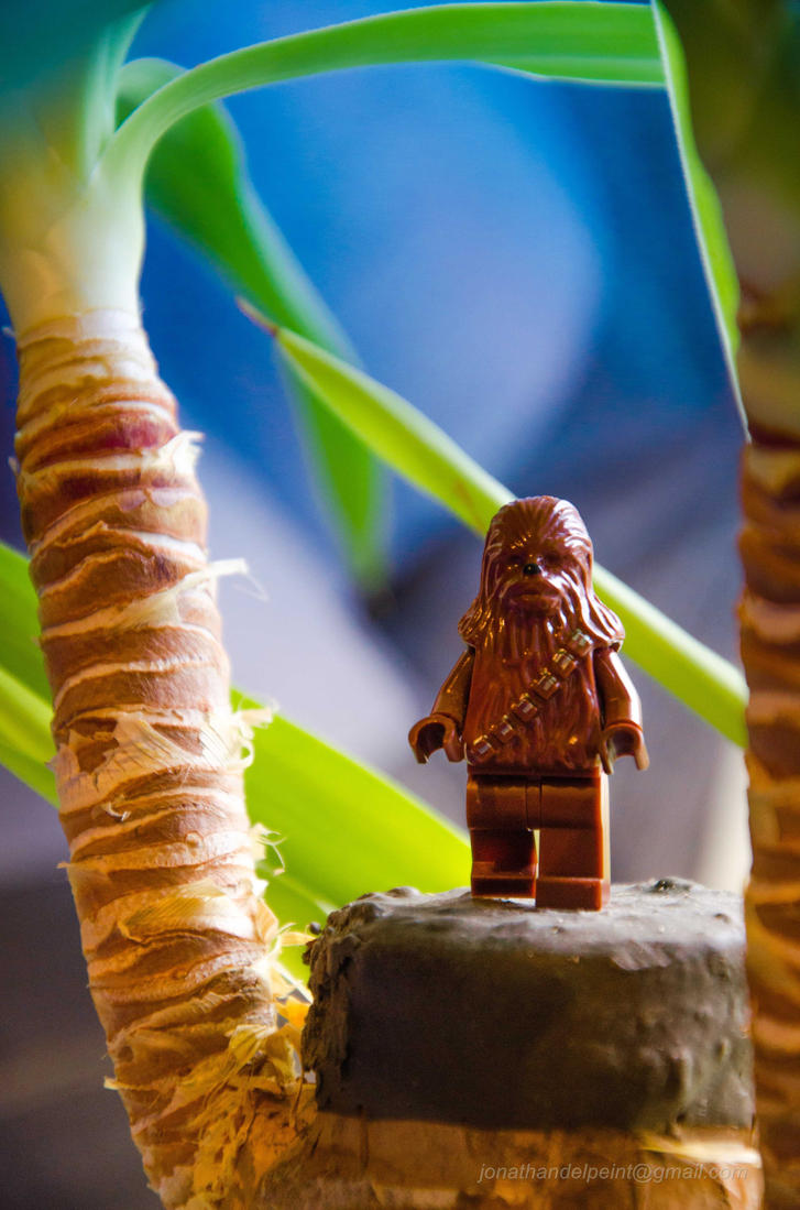 Happy Holidays from Chewbacca! by arkhamjo
