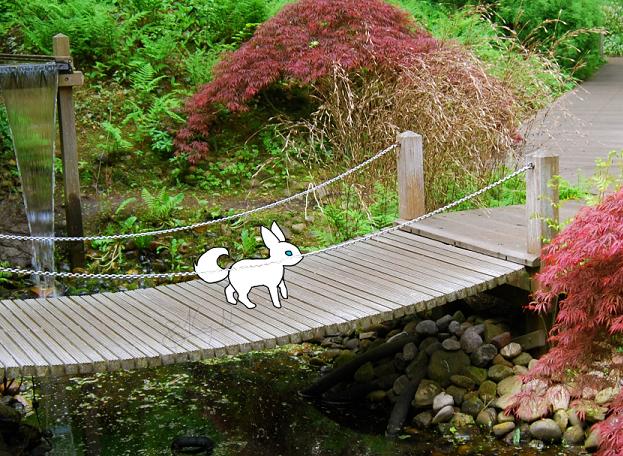 taking a stroll through the garden~