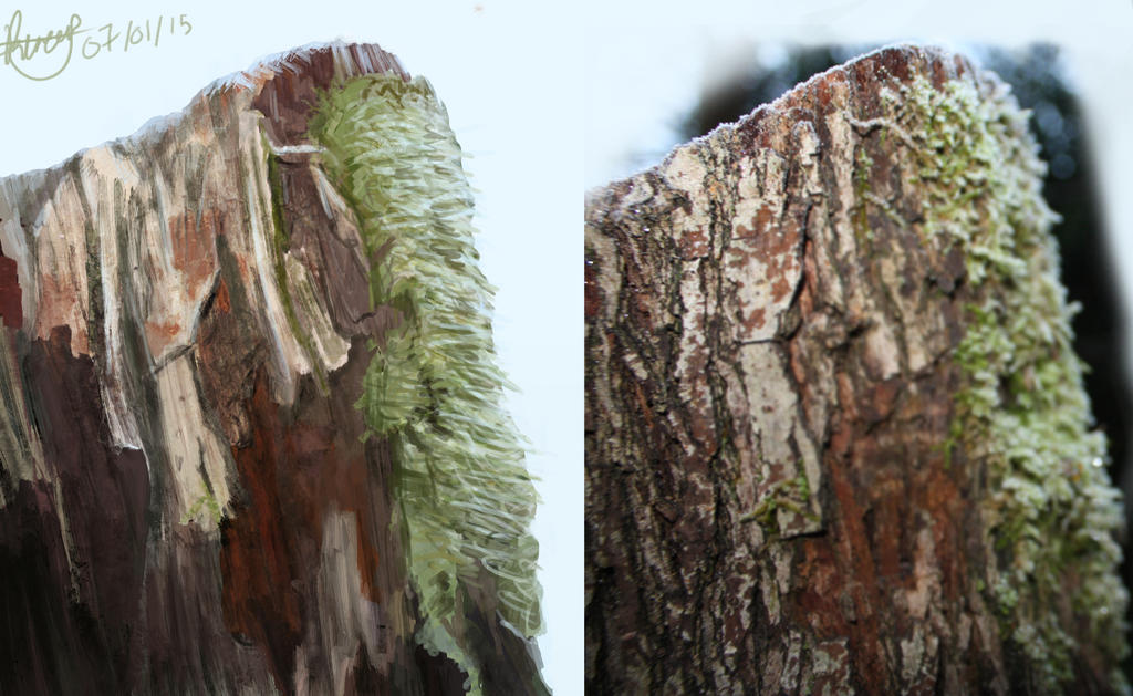Tree observational painting