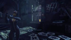 Batman: Arkham City - Catwoman I