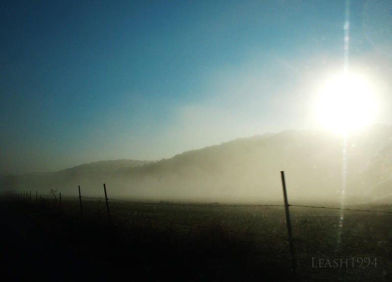 Misty Morning by leash1994