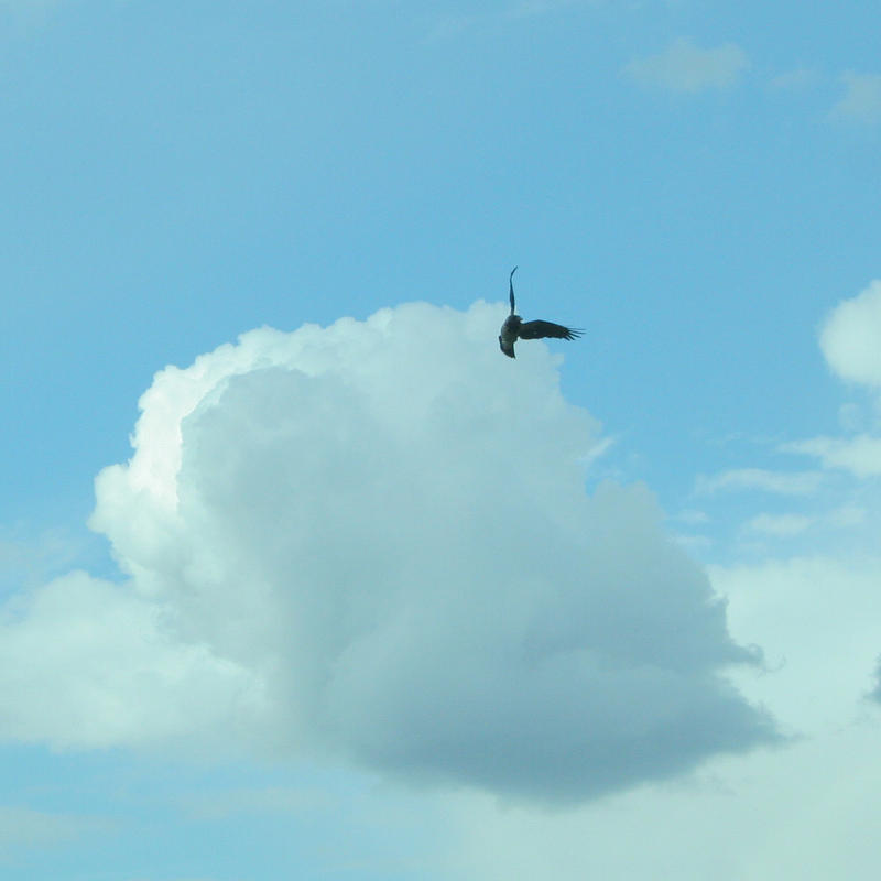 Sky by Mon-artefact