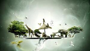 'Noah's Board' for Desktopography 2011