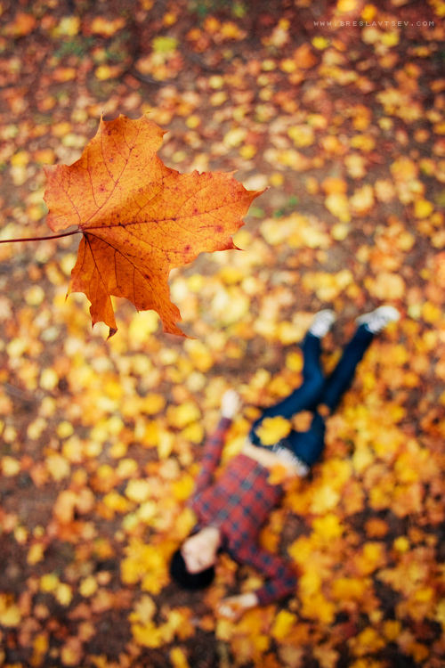 ...falling in autumn... by OlegBreslavtsev